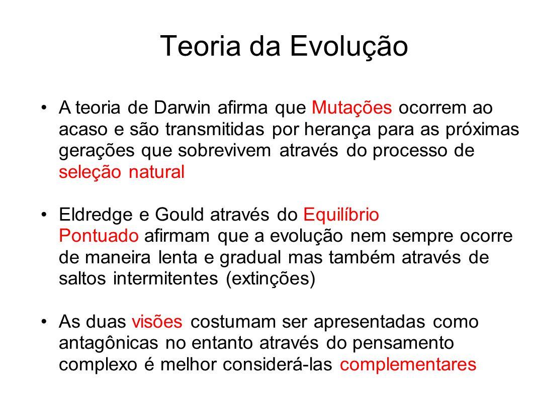 Teoria da Evolução A teoria de Darwin afirma que Mutações ocorrem ao acaso e são transmitidas por herança para as próximas gerações que sobrevivem atr