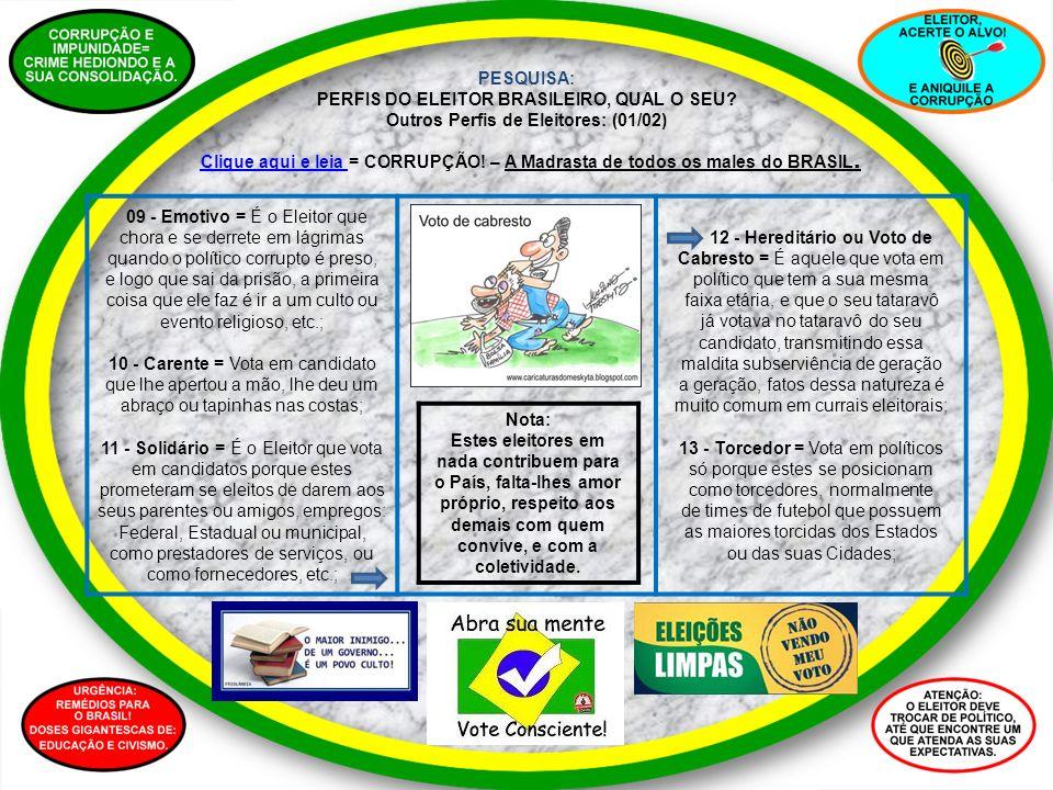 PESQUISA: PERFIS DO ELEITOR BRASILEIRO, QUAL O SEU? Outros Perfis de Eleitores: (01/02) Clique aqui e leia Clique aqui e leia = CORRUPÇÃO! – A Madrast
