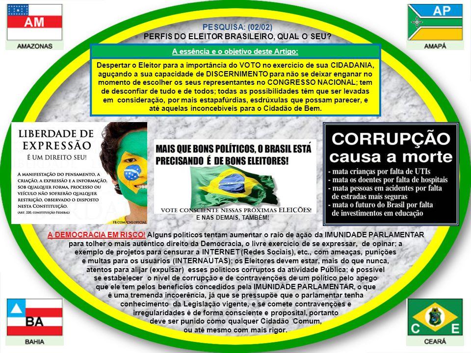 A DEMOCRACIA EM RISCO.