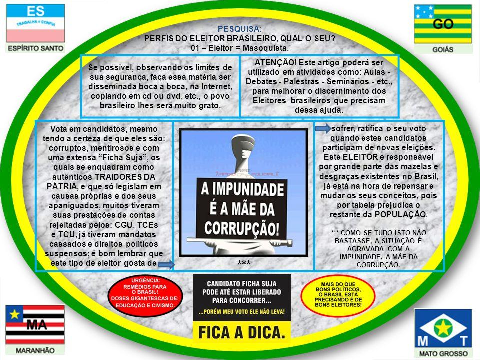 PESQUISA: PERFIS DO ELEITOR BRASILEIRO, QUAL O SEU? 01 – Eleitor = Masoquista. Vota em candidatos, mesmo tendo a certeza de que eles são: corruptos, m