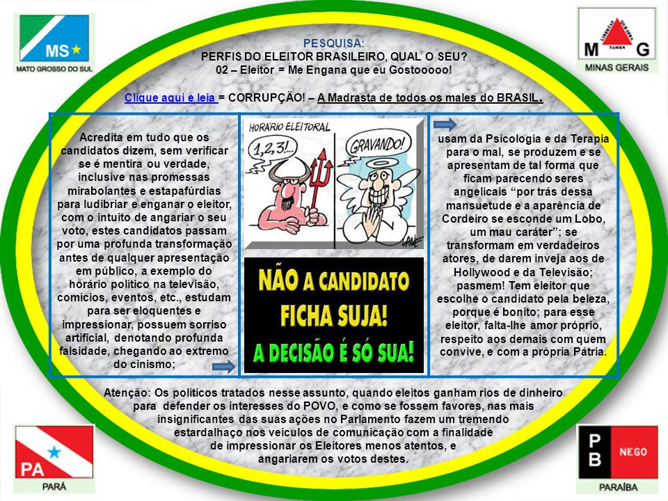 PESQUISA: PERFIS DO ELEITOR BRASILEIRO, QUAL O SEU? 02 – Eleitor = Me Engana que eu Gostooooo! Acredita em tudo que os candidatos dizem, sem verificar