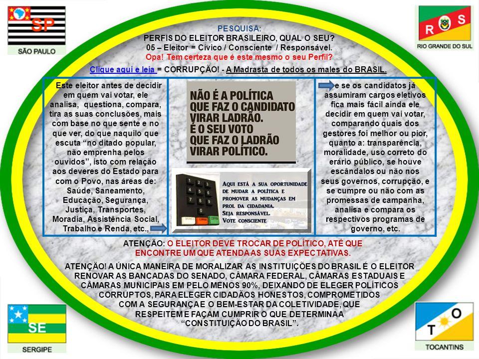 PESQUISA: PERFIS DO ELEITOR BRASILEIRO, QUAL O SEU? 05 – Eleitor = Cívico / Consciente / Responsável. Opa! Tem certeza que é este mesmo o seu Perfil?