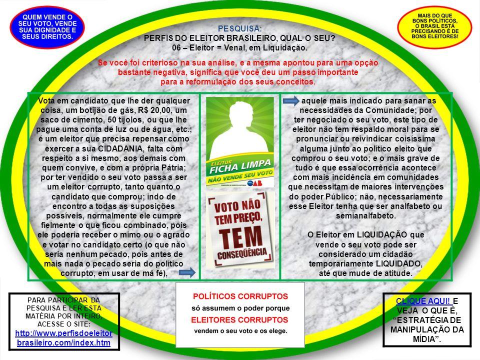 PESQUISA: PERFIS DO ELEITOR BRASILEIRO, QUAL O SEU? 06 – Eleitor = Venal, em Liquidação. Vota em candidato que lhe der qualquer coisa, um botijão de g