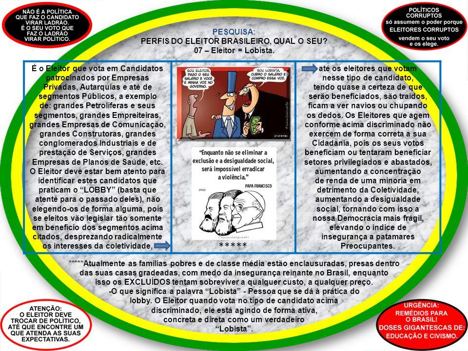 PESQUISA: PERFIS DO ELEITOR BRASILEIRO, QUAL O SEU? 07 – Eleitor = Lobista. É o Eleitor que vota em Candidatos patrocinados por Empresas Privadas, Aut