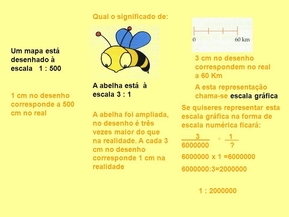 Qual o significado de: Um mapa está desenhado à escala 1 : 500 A abelha está à escala 3 : 1 1 cm no desenho corresponde a 500 cm no real A abelha foi