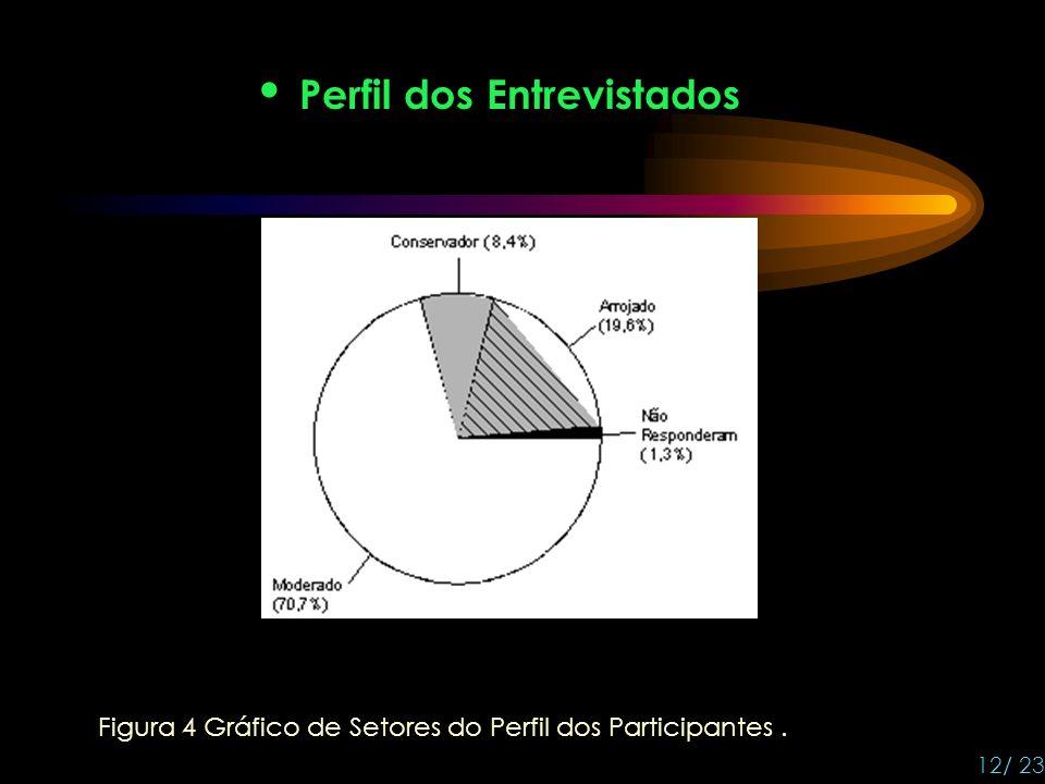 Perfil dos Entrevistados Figura 4 Gráfico de Setores do Perfil dos Participantes. 12/ 23