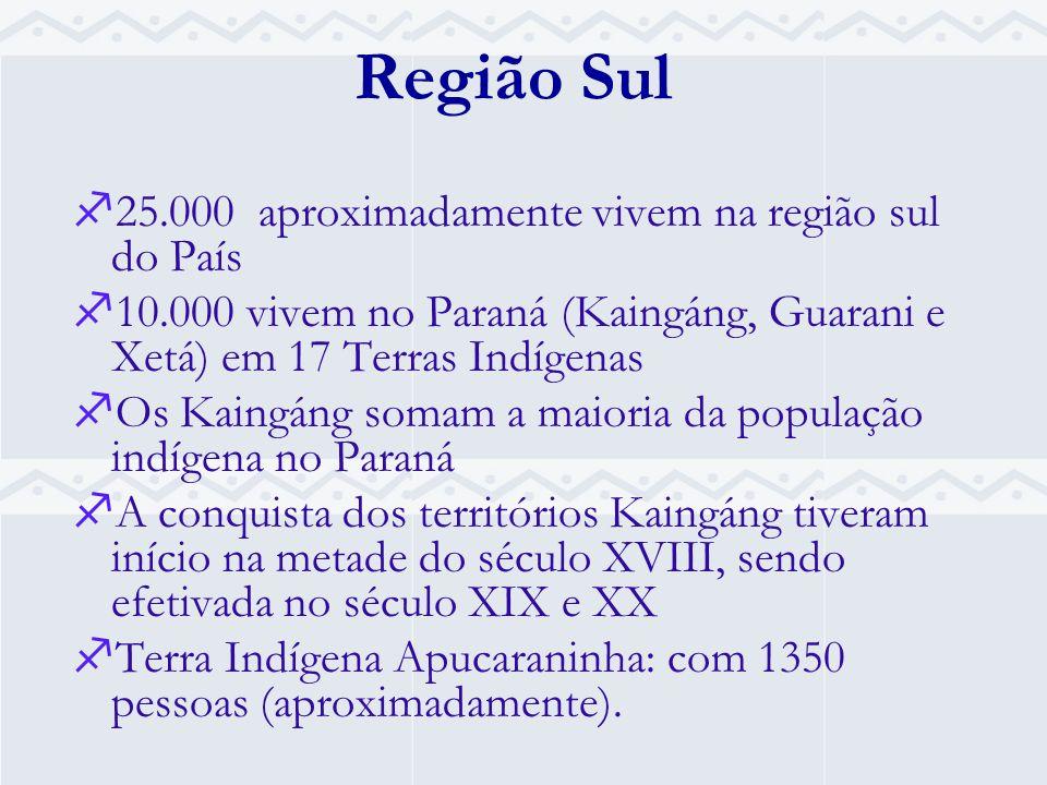 Região Sul 25.000 aproximadamente vivem na região sul do País 10.000 vivem no Paraná (Kaingáng, Guarani e Xetá) em 17 Terras Indígenas Os Kaingáng somam a maioria da população indígena no Paraná A conquista dos territórios Kaingáng tiveram início na metade do século XVIII, sendo efetivada no século XIX e XX Terra Indígena Apucaraninha: com 1350 pessoas (aproximadamente).