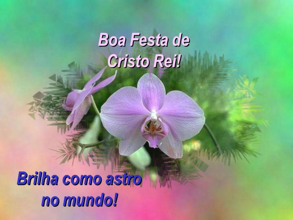 Boa Festa de Cristo Rei! Brilha como astro no mundo!