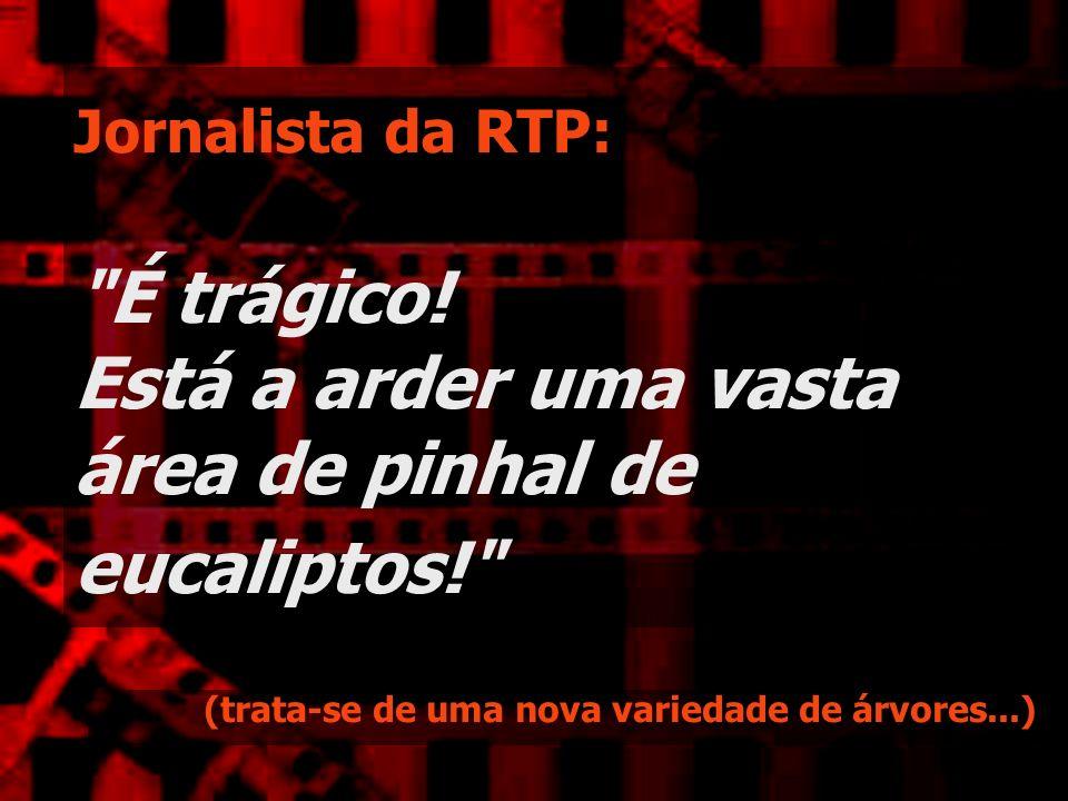 Jornalista da RTP: