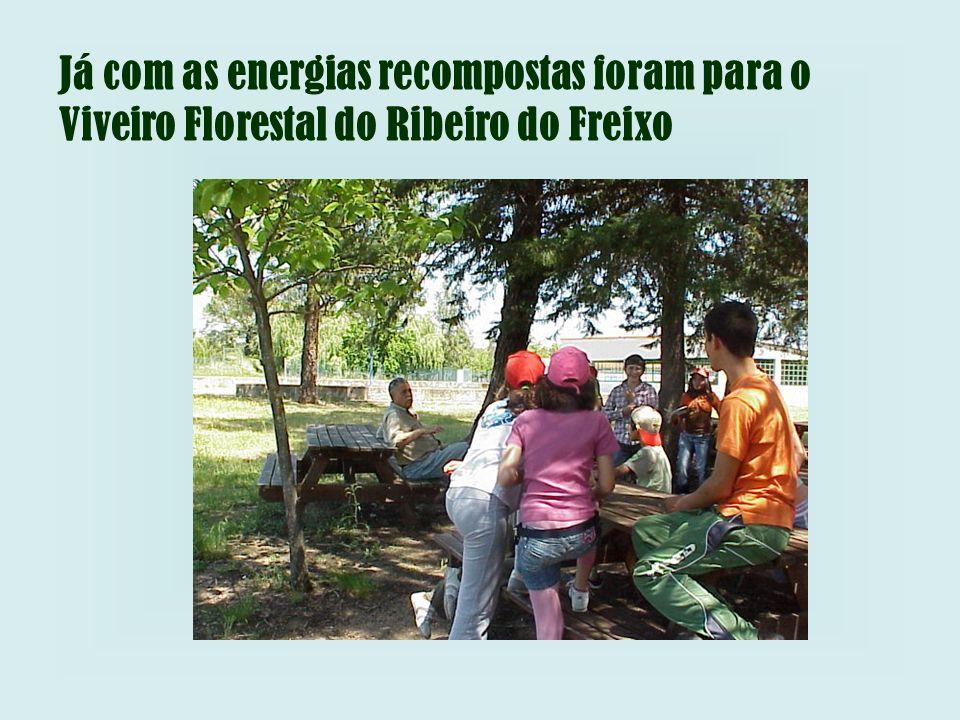 Já com as energias recompostas foram para o Viveiro Florestal do Ribeiro do Freixo