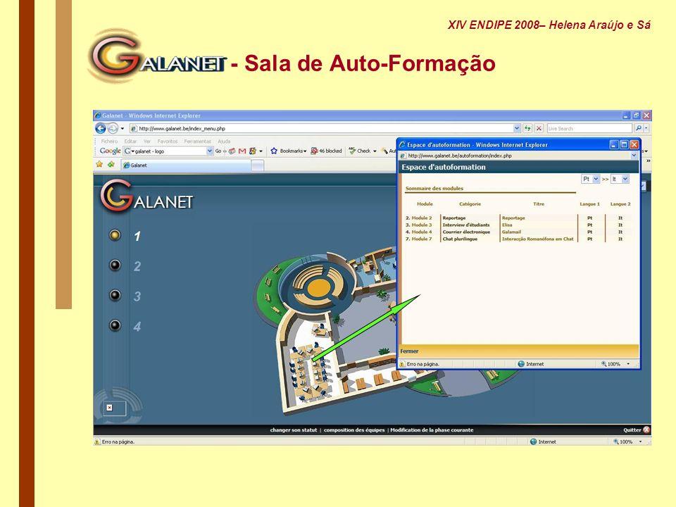 - Sala de Auto-Formação XIV ENDIPE 2008– Helena Araújo e Sá