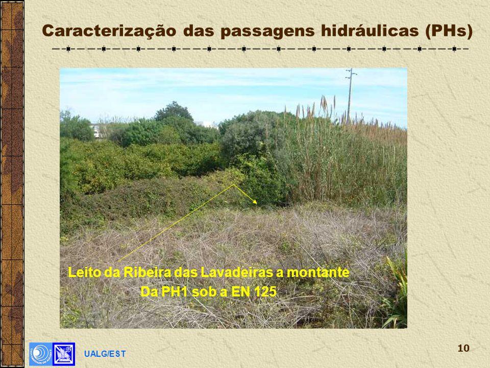 UALG/EST 10 Caracterização das passagens hidráulicas (PHs) Leito da Ribeira das Lavadeiras a montante Da PH1 sob a EN 125