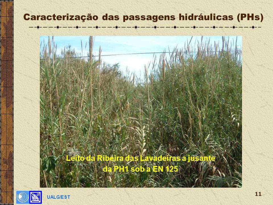 UALG/EST 11 Caracterização das passagens hidráulicas (PHs) Leito da Ribeira das Lavadeiras a jusante da PH1 sob a EN 125