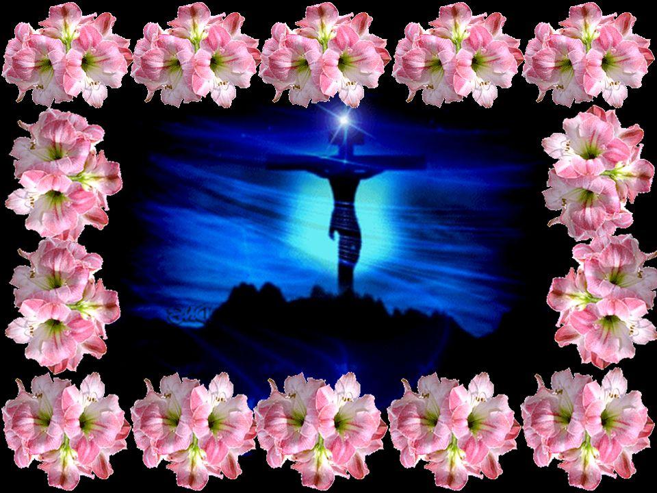 OREMOS Pai do céu, quem pode descobrir as tuas intenções e descobrir a tua vontade.