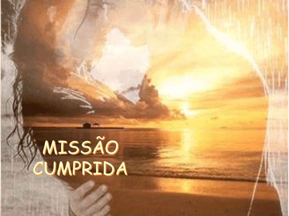 MISSÃO CUMPRIDA MISSÃO CUMPRIDA