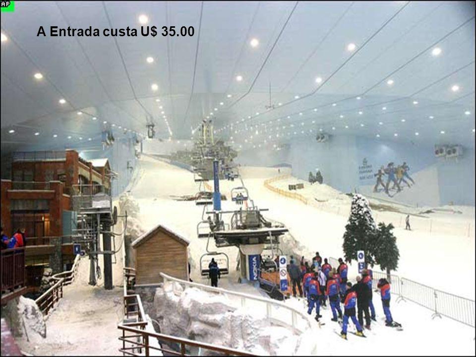Ski Dubai Possui 5 Rampas que variam de dificuldade e altura, a maior possui 400 metros e uma inclinação de 60 metros