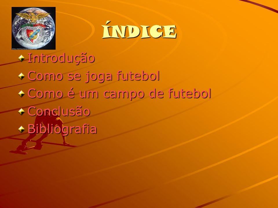 ÍNDICE Introdução Como se joga futebol Como é um campo de futebol Conclusão Bibliografia