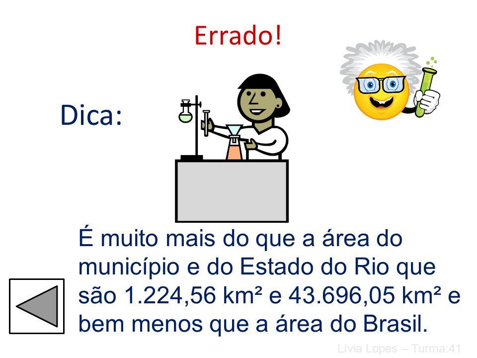 Área total do Brasil é de 8.514.215,3 km 2. Qual é a área da Alemanha? 357.021 km² 8.638.087 km² 52.069 km² 1.083 km² Anna Luiza e Vanessa Coutinho –