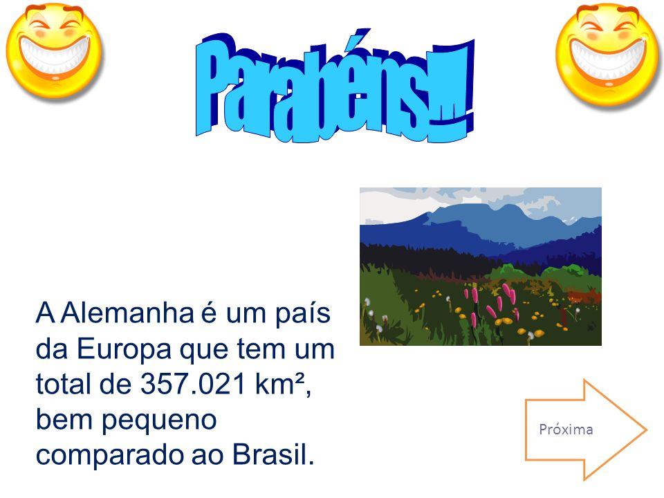 Errado! Dica: É muito mais do que a área do município e do Estado do Rio que são 1.224,56 km² e 43.696,05 km² e bem menos que a área do Brasil. Lívia