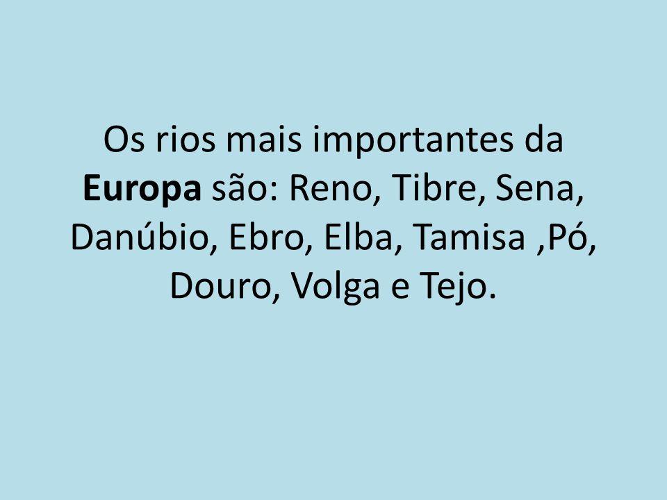 Os rios mais importantes da Europa são: Reno, Tibre, Sena, Danúbio, Ebro, Elba, Tamisa,Pó, Douro, Volga e Tejo.