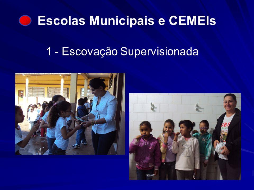 Escolas Municipais e CEMEIs 1 - Escovação Supervisionada