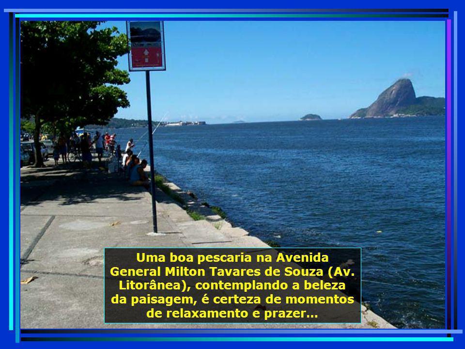 Ilha dos Cardos, localizada em frente ao Museu de Arte Contemporânea - MAC, próxima à Praia da Boa Viagem…