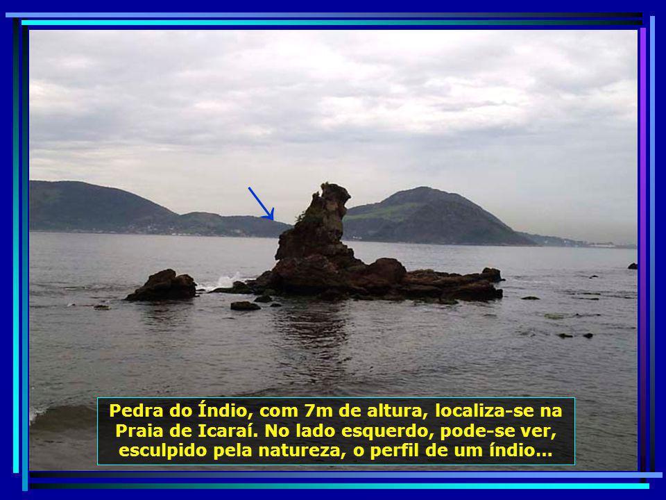 Situada entre as Praias das Flechas e de Icaraí, a Pedra da Itapuca, com 8 m de altura, tombada pelo Instituto Estadual de Patrimônio Cultural, é símb