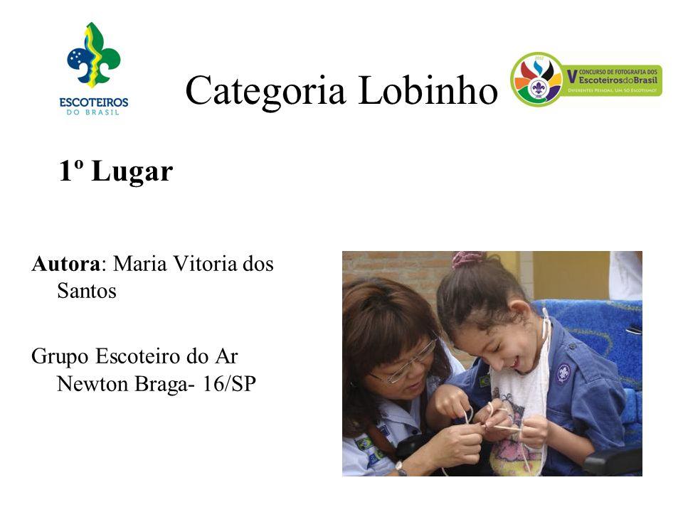Categoria Lobinho 1º Lugar Autora: Maria Vitoria dos Santos Grupo Escoteiro do Ar Newton Braga- 16/SP