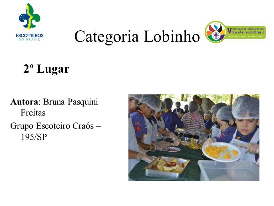 Categoria Lobinho 2º Lugar Autora: Bruna Pasquini Freitas Grupo Escoteiro Craós – 195/SP