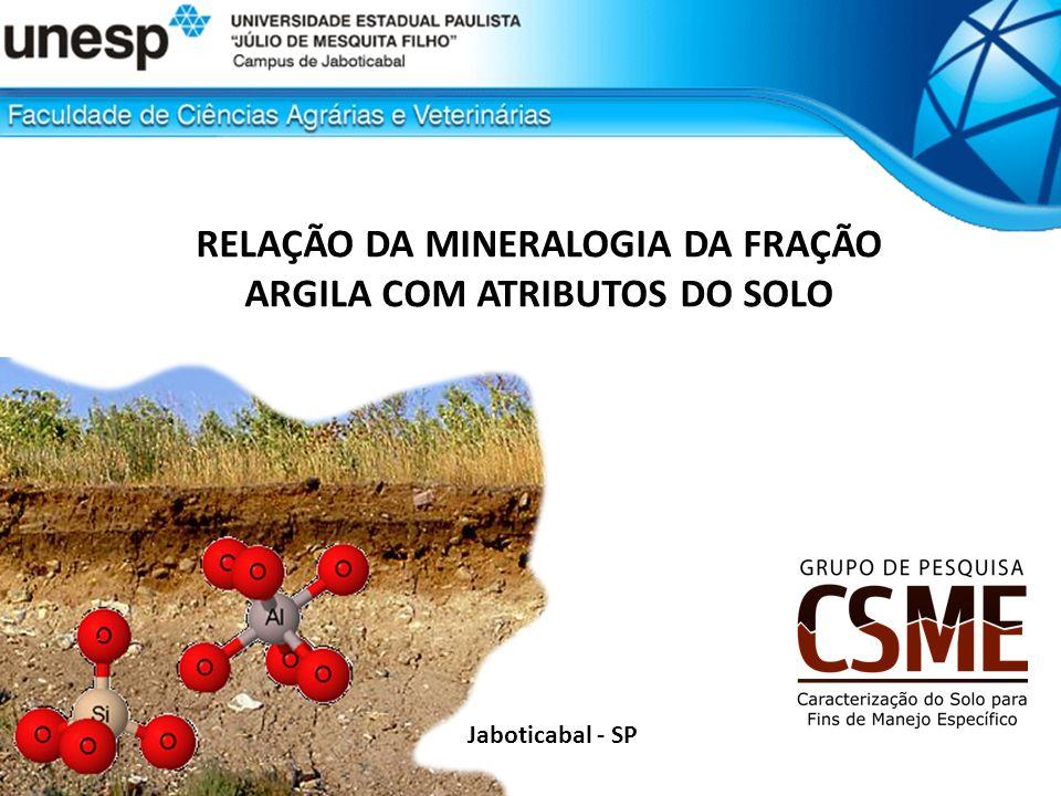RELAÇÃO DA MINERALOGIA DA FRAÇÃO ARGILA COM ATRIBUTOS DO SOLO Jaboticabal - SP