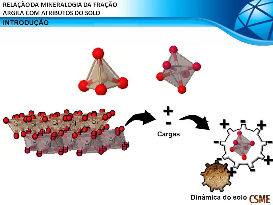 INTRODUÇÃO + - Dinâmica do solo Cargas-- - - - + + + + RELAÇÃO DA MINERALOGIA DA FRAÇÃO ARGILA COM ATRIBUTOS DO SOLO