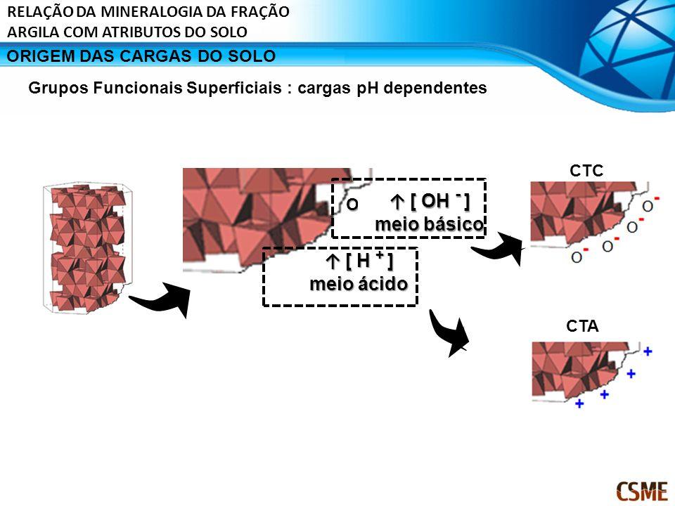 ORIGEM DAS CARGAS DO SOLO OH OH [ OH - ] [ OH - ] meio básico [ H + ] [ H + ] meio ácido CTC CTA Grupos Funcionais Superficiais : cargas pH dependente