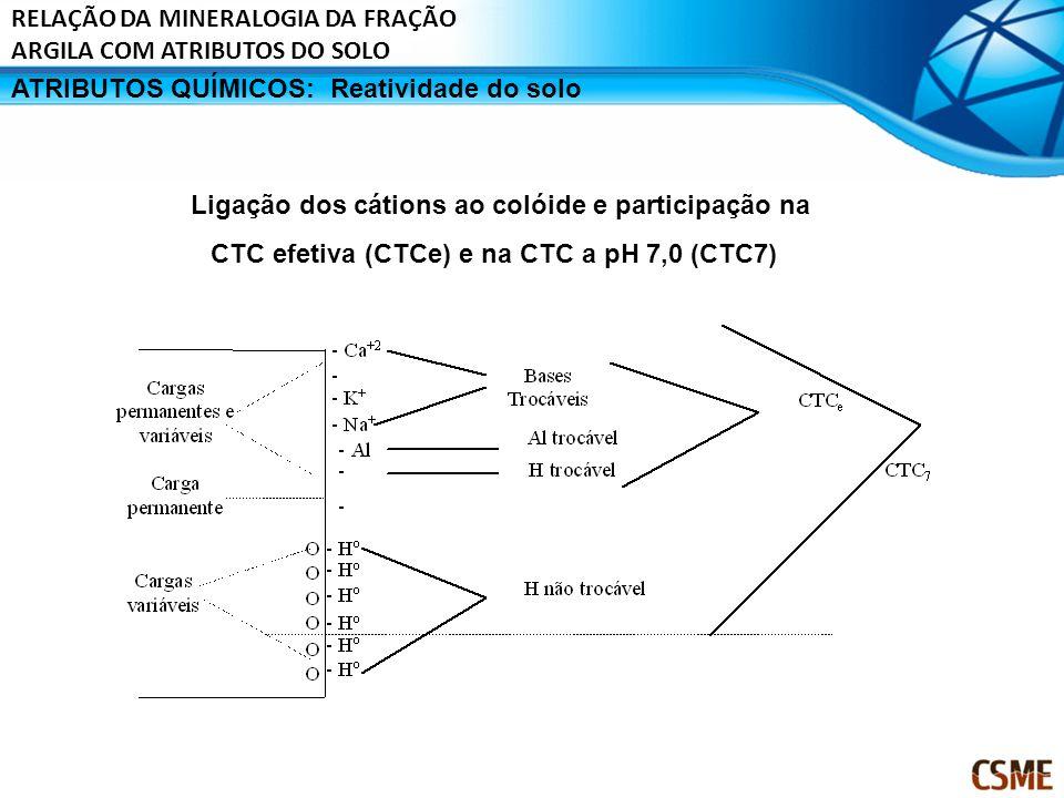 ATRIBUTOS QUÍMICOS:Reatividade do solo Ligação dos cátions ao colóide e participação na CTC efetiva (CTCe) e na CTC a pH 7,0 (CTC7) RELAÇÃO DA MINERAL