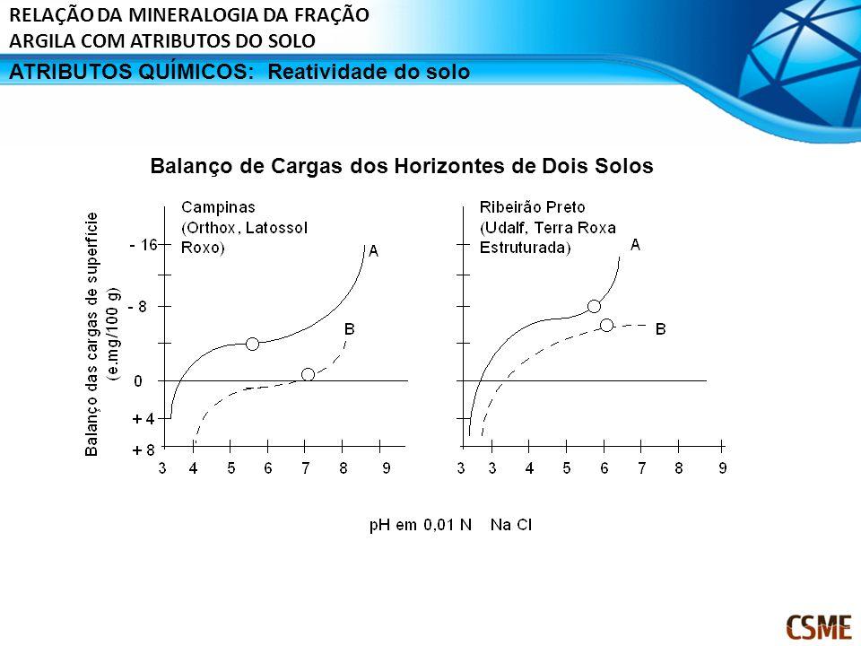 ATRIBUTOS QUÍMICOS:Reatividade do solo Balanço de Cargas dos Horizontes de Dois Solos RELAÇÃO DA MINERALOGIA DA FRAÇÃO ARGILA COM ATRIBUTOS DO SOLO