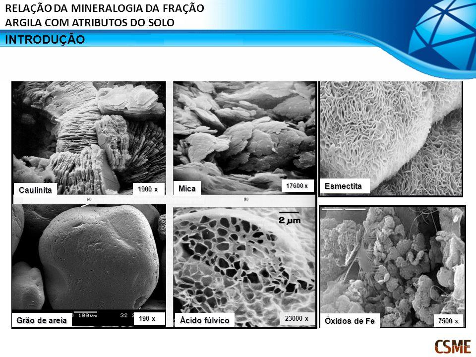 Caulinita Mica Ácido fúlvico 1900 x 17600 x Grão de areia 190 x Esmectita 23000 x Óxidos de Fe 7500 x INTRODUÇÃO RELAÇÃO DA MINERALOGIA DA FRAÇÃO ARGI