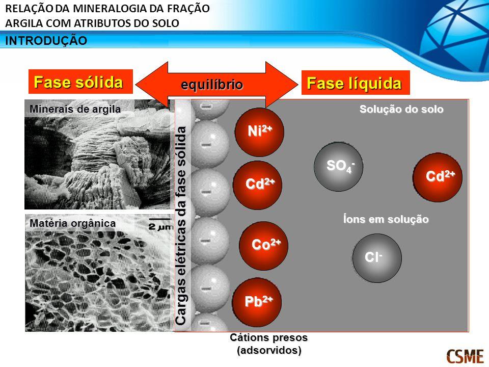 Minerais de argila Matéria orgânica Fase sólida Fase líquida Cargas elétricas da fase sólida Cátions presos (adsorvidos) Solução do solo Íons em soluç