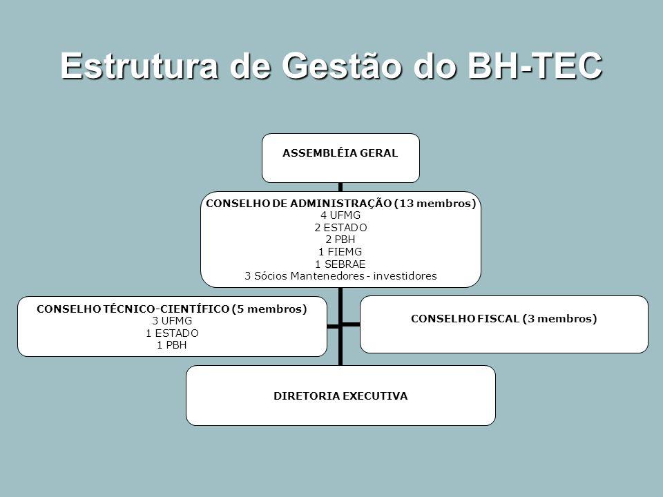 Estrutura de Gestão do BH-TEC ASSEMBLÉIA GERAL CONSELHO DE ADMINISTRAÇÃO (13 membros) 4 UFMG 2 ESTADO 2 PBH 1 FIEMG 1 SEBRAE 3 Sócios Mantenedores - i