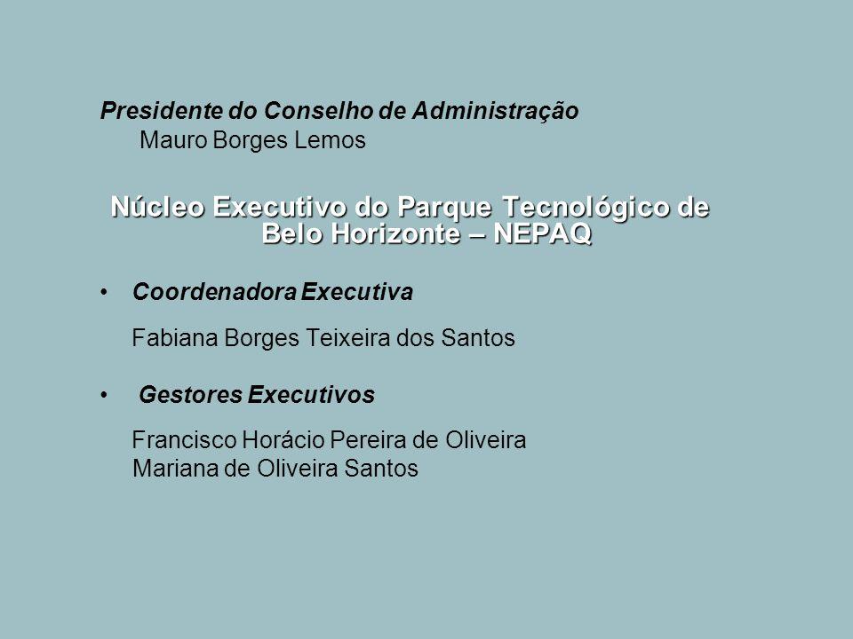 Presidente do Conselho de Administração Mauro Borges Lemos Núcleo Executivo do Parque Tecnológico de Belo Horizonte – NEPAQ Coordenadora Executiva Fab