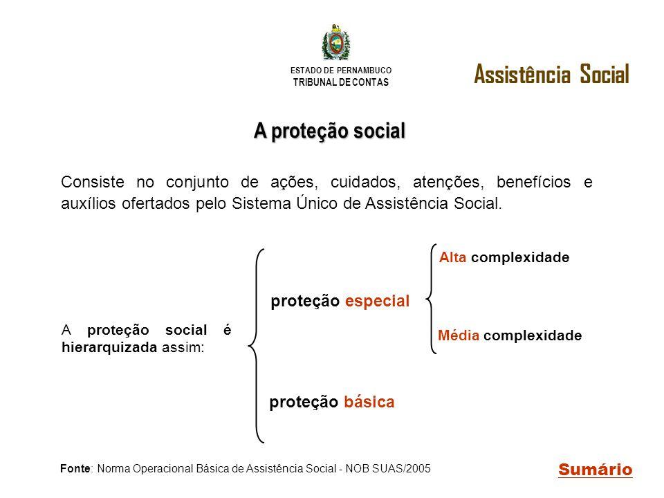ESTADO DE PERNAMBUCO TRIBUNAL DE CONTAS A proteção social Assistência Social Sumário proteção especial A proteção social é hierarquizada assim: Fonte: