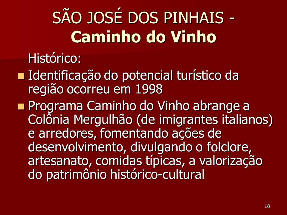 18 SÃO JOSÉ DOS PINHAIS - Caminho do Vinho Histórico: Identificação do potencial turístico da região ocorreu em 1998 Identificação do potencial turíst