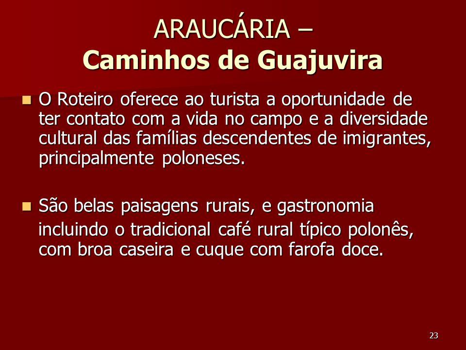 23 ARAUCÁRIA – Caminhos de Guajuvira O Roteiro oferece ao turista a oportunidade de ter contato com a vida no campo e a diversidade cultural das famíl