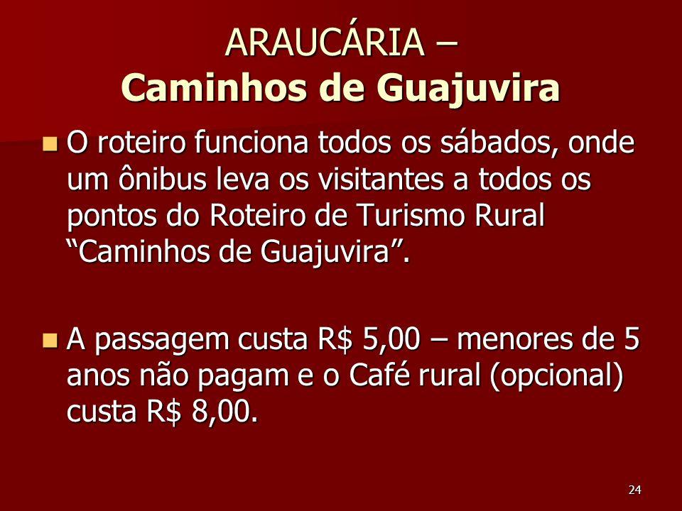 24 ARAUCÁRIA – Caminhos de Guajuvira O roteiro funciona todos os sábados, onde um ônibus leva os visitantes a todos os pontos do Roteiro de Turismo Ru