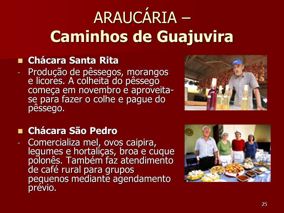 25 ARAUCÁRIA – Caminhos de Guajuvira Chácara Santa Rita Chácara Santa Rita - Produção de pêssegos, morangos e licores. A colheita do pêssego começa em
