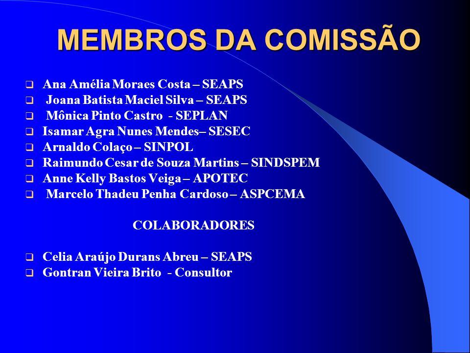 MEMBROS DA COMISSÃO Ana Amélia Moraes Costa – SEAPS Joana Batista Maciel Silva – SEAPS Mônica Pinto Castro - SEPLAN Isamar Agra Nunes Mendes– SESEC Ar