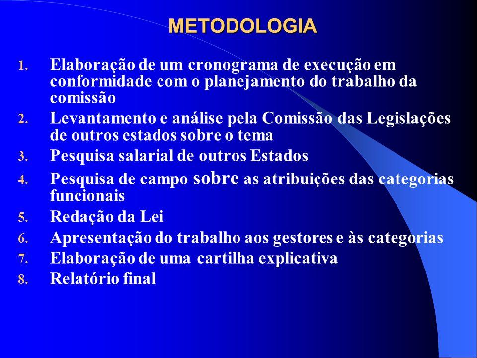 METODOLOGIA 1. Elaboração de um cronograma de execução em conformidade com o planejamento do trabalho da comissão 2. Levantamento e análise pela Comis