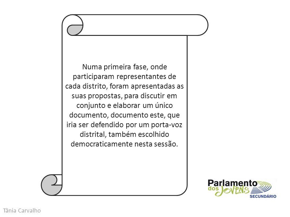 Tânia Carvalho Numa primeira fase, onde participaram representantes de cada distrito, foram apresentadas as suas propostas, para discutir em conjunto e elaborar um único documento, documento este, que iria ser defendido por um porta-voz distrital, também escolhido democraticamente nesta sessão.