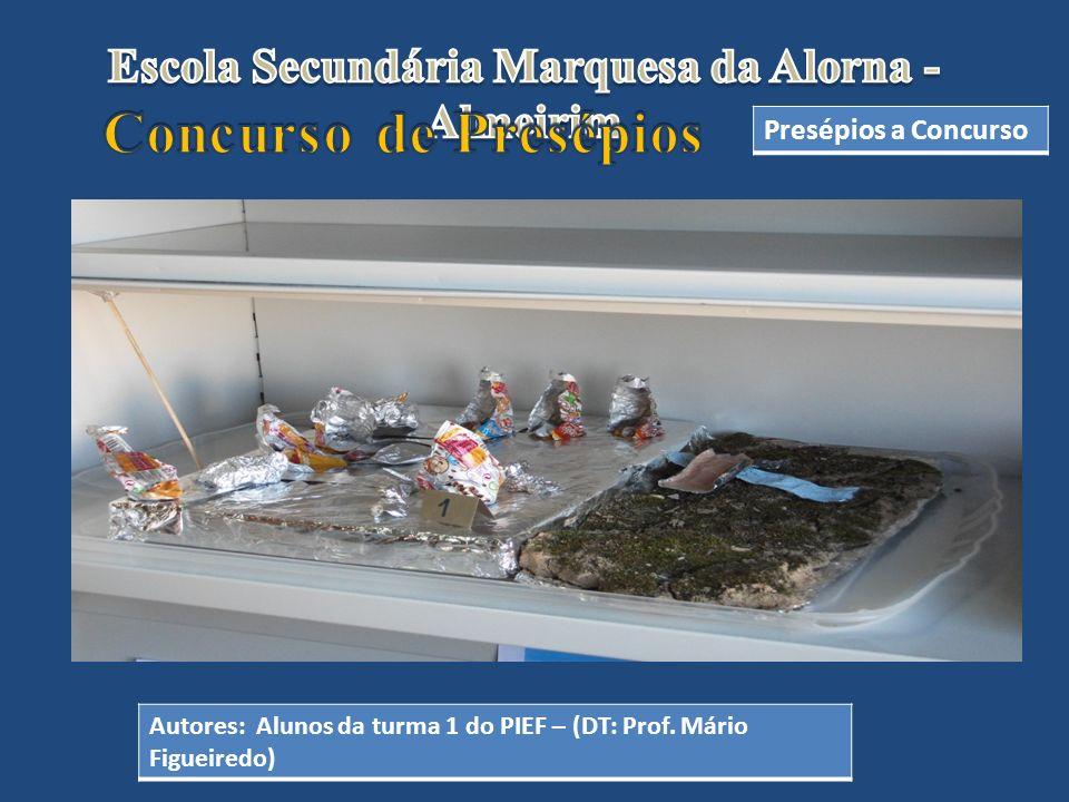 Autores: Alunos da turma 1 do PIEF – (DT: Prof. Mário Figueiredo)