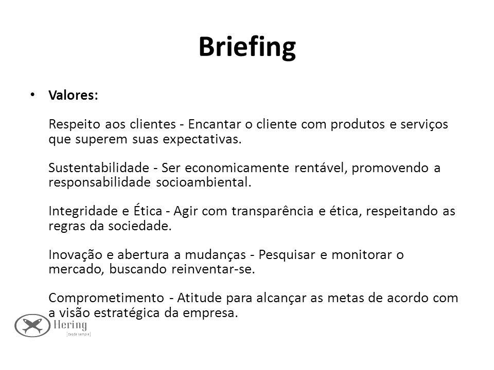 Briefing Valores: Respeito aos clientes - Encantar o cliente com produtos e serviços que superem suas expectativas. Sustentabilidade - Ser economicame
