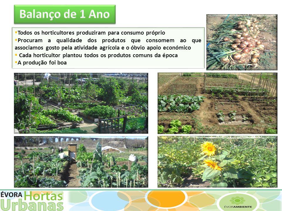 Todos os horticultores produziram para consumo próprio Procuram a qualidade dos produtos que consomem ao que associamos gosto pela atividade agrícola