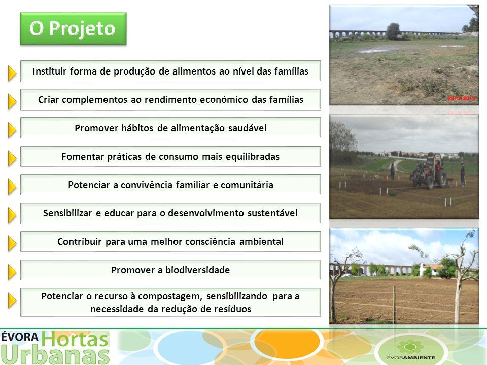 Instituir forma de produção de alimentos ao nível das famílias Criar complementos ao rendimento económico das famílias Fomentar práticas de consumo ma